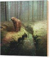 Bear Mountain Fantasy Wood Print