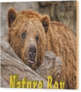 Bear Nature Boy Wood Print
