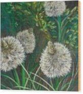 Bear Paw Grass Wood Print