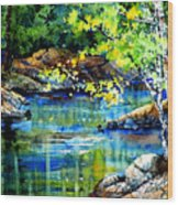 Bear Paw Stream Wood Print