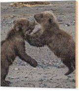 Bear Play Wood Print
