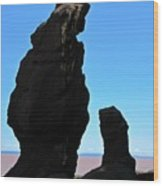 Bear Rock Wood Print