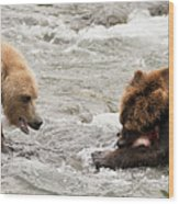 Bear Watches Another Eat Salmon In River Wood Print