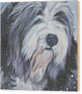 Bearded Collie In Snow Wood Print