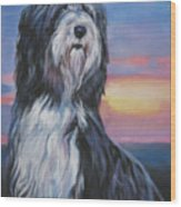 Bearded Collie Sunset Wood Print