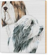 Bearded Collies Wood Print