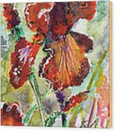 Bearded Iris Brown Sally Watercolor Wood Print