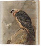 Bearded Vulture By Thorburn Wood Print