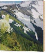 Beargrass Flower On The Slopes Of Mt. Hood Wood Print