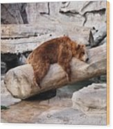 Bearly Relaxing Wood Print