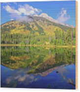 Bearpaw Morning Reflections Wood Print