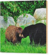 Bears In Love Wood Print