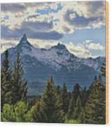 Beartooth Mountains In Spring Wood Print