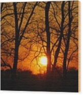Beauatiful Red Sunset Wood Print