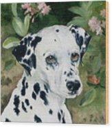 Beaudiddeley Wood Print