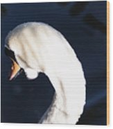 Beautiful Abstract Surreal White Swan Looking Away Wood Print