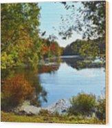 Willow Pond, Caleb Smith Preserve Wood Print