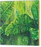 Beautiful Banana Leaves Wood Print