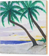 Beautiful Beaches Of Sw Florida Wood Print