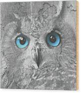 Beautiful Blue-eyed Owl Wood Print
