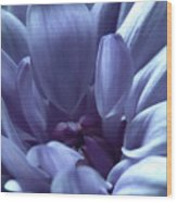 Beautiful Blue Wood Print