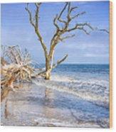 Beautiful Botany Bay Beach  Wood Print