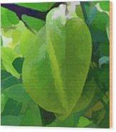 Beautiful Carambola Fruit Tree Wood Print