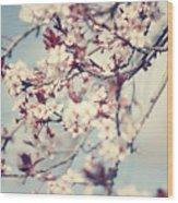 Beautiful Cherry Tree Blossom Wood Print