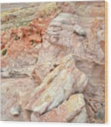 Beautiful Color In Wash 3 Of Valley Of Fire Wood Print