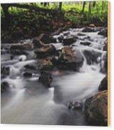 Beautiful Creek In Western Ghats Region Of Karnataka State India Wood Print
