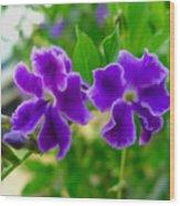 Beautiful Duranta Flower Blossoming Wood Print