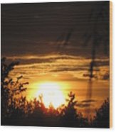 Beautiful End Of Day Wood Print
