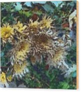 Beautiful Flowers In A Group Wood Print