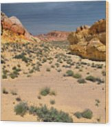 Beautiful Hiking In The Valley Of Fire Wood Print