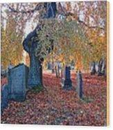 Beautiful Historic Camp Hill Cemetery Halifax Nova Scotia Wood Print