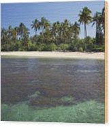 Beautiful Lanai Beach Wood Print