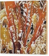 Beautiful Marine Plants 8 Wood Print