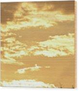 Beautiful Morming Sky  Wood Print