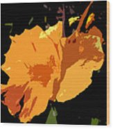Beautiful Orange Work Number 19 Wood Print