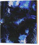 Beautiful Palm In Blue Sky Wood Print