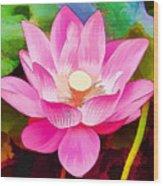 Beautiful Pink Lilies Wood Print