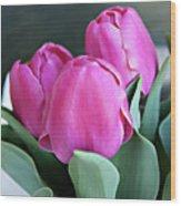 Beautiful Pink Lipstick Wood Print