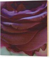 Beautiful Purple Rose Macro 2 Wood Print