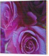 Beautiful Purple Roses 2 Wood Print