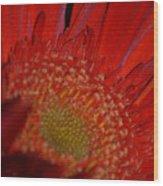 Beautiful Red Wood Print