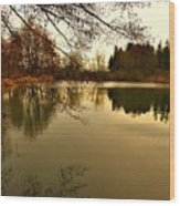 Beautiful Reflection In The Evening Hours Wood Print