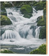 Beautiful River In Forest Wood Print