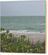 Beautiful Seascape Wood Print