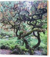 Beautiful Japanese Garden,butchart Gardens,victoria,canada 2. Wood Print