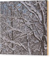 Beautiful Snow Wood Print